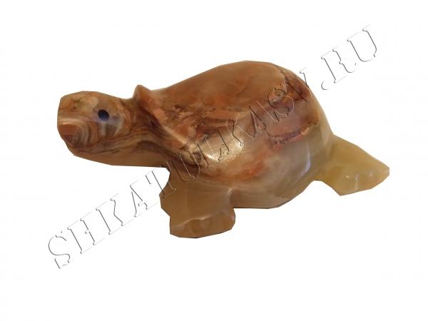 Черепаха №4